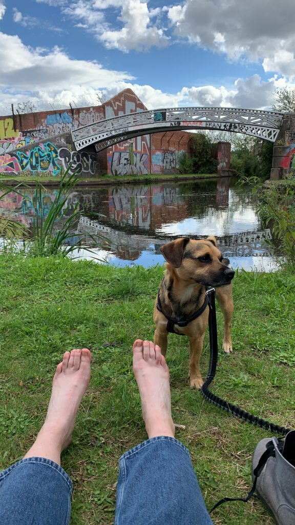 a white person practicing being held by the earth - they are barefoot on grass by a canal, with a small brown dog